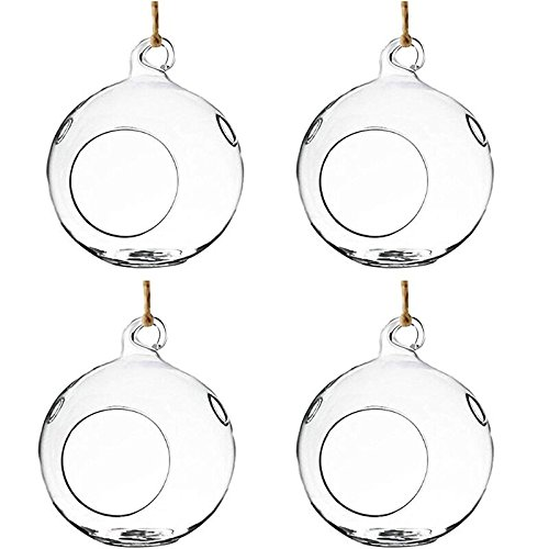 Fashionstorm Set of 4 Hanging Glass Plant Terrariums Glass Hanging Planters Hanging Air PlantTerrariums DIY Plant Container, 5