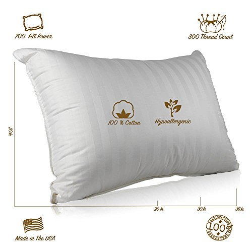 Continental Bedding Superior Hungarian White Goose Down Pillow, Best Hungarian Goose Down Pillow
