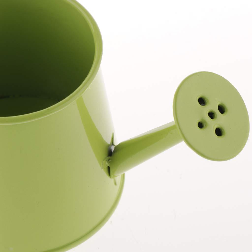 non-brand Sharplace Latta di Innaffiatura Mini Bonsai Stile Pastorale Vaso di Fiori per Giardino Verde