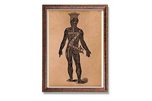Vintage anatomy poster Human body illustration Medical art print