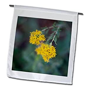Jos Fauxtographee Realistic - Some pretty yellow wild flowers growing on a vine - 18 x 27 inch Garden Flag (fl_64142_2)
