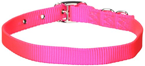 Hamilton 5/8-Inch by 20-Inch Single Thick Nylon Deluxe Dog Collar, Hot Pink