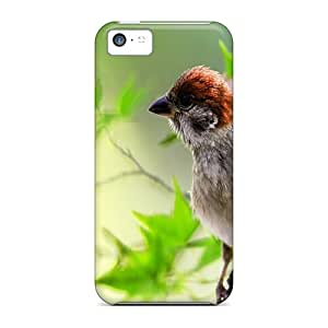 Excellent Iphone 5c Cases Covers Back Skin Protector Little Birdy