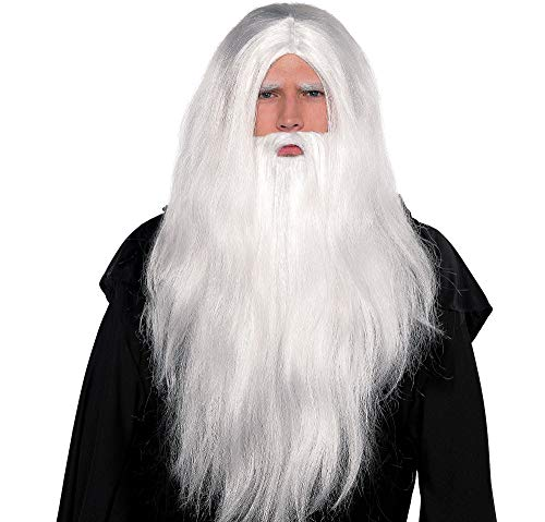 AMSCAN Silver Merlin Wig and Beard Halloween Costume Accessories, One Size -
