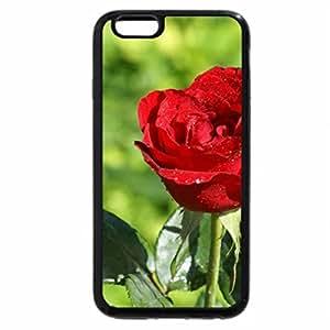 iPhone 6S Plus Case, iPhone 6 Plus Case, ROSE,