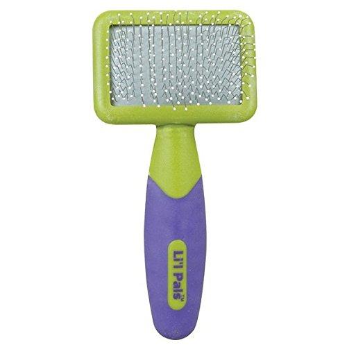 Li'l Pals Kitten Slicker Brush with Coated Tip Pins (Brush Slicker Bristle)