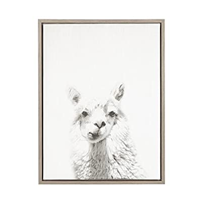 Kate and Laurel Sylvie Alpaca Framed Canvas by Simon Te, 18x24, Gray - Decorative black and white alpaca portrait printed on framed gallery wrapped canvas Metal sawtooth hangers are already attached to the inset MDF back for easy wall display Framed canvas display dimensions are 24 inches high by 18 inches across by 1.6 inches deep - wall-art, living-room-decor, living-room - 41YZhGC1jgL. SS400  -