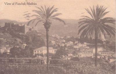 - G2419 Portugal, Madeira Funchal View Postcard