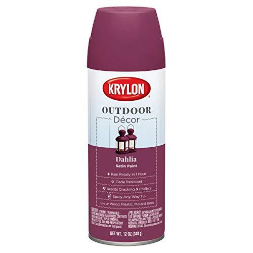 Krylon Outdoor Décor Spray Paint, Dahlia