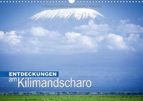 Entdeckungen am Kilimandscharo (Wandkalender 2014 DIN A3 quer): Schnee in Afrika (Monatskalender, 14 Seiten)