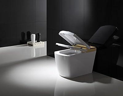 SYSINN SL610-2 Auto-open,Auto-close,Washer Heating,Cushion Heating,Radar Detect Smart 1-Piece Toilet Set