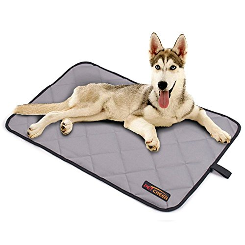 - Paw Essentials Oxford Fabric Waterproof Pet/Dog/Cat Mat for Home, Car, Outdoors - (Color: Grey, Size: Medium)