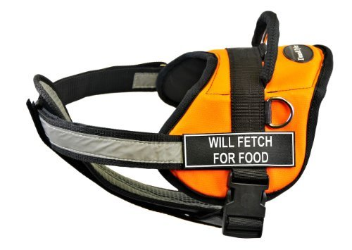 Dean & Tyler 28 to 38-Inch ''Will Fetch for Food'' Fun Pet Harness with Padded Reflective Chest Straps, Medium, Orange/Black by Dean & Tyler