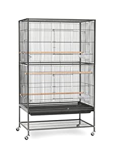 2. Prevue Hendryx Pet Products Wrought Iron Flight Cage