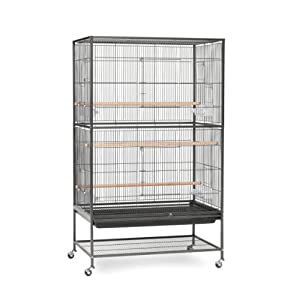 Prevue Pet Products Wrought Iron Flight Cage with Stand F040 Black Bird Cage, 31-Inch by 20-1/2-Inch by 53-Inch 31