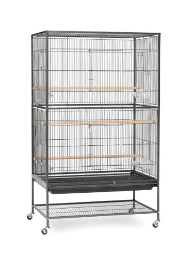 Prevue Pet Products Wrought Iron Flight Cage with Stand F040 Black Bird Cage, 31-Inch by 20-1/2-Inch by 53-Inch