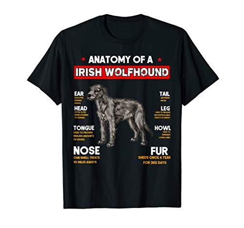 Irish Wolfhound Leash - Anatomy Of A Irish Wolfhound Dogs Lovers T Shirt