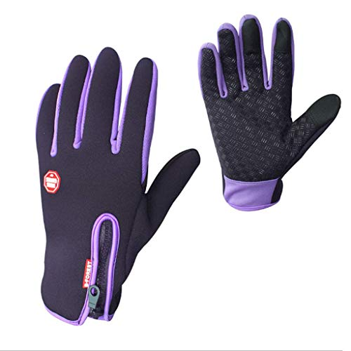 Warm Gloves Fleece Thickened Touch Screen Windproof Outdoor Bicycle Riding Ski Waterproof Sports Climbing Multicolor Men and Women Winter (Color : D, Size : L)