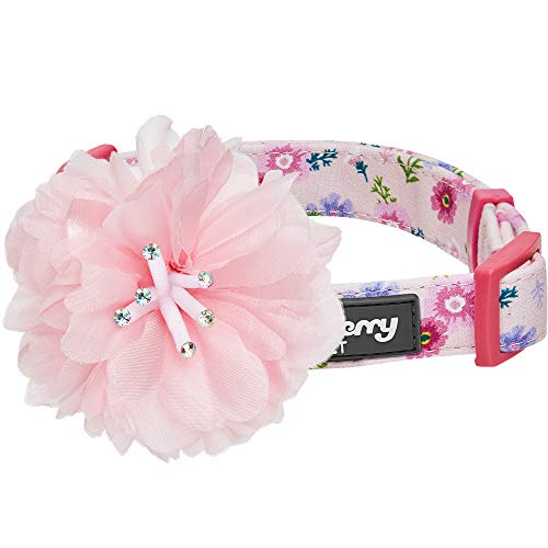 Blueberry Pet 2019 New 4 Patterns Floral Power Cosmos Designer Pink Dog Collar with Detachable Pink Peony, Small, Neck 12