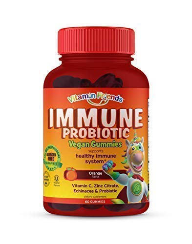 Vitamin Friends – Probiotics for Kids and Adults, Children s Multivitamin Immune Support Gummies with Vitamin C, Zinc Citrate Echinacea – Probiotic Supplement for Healthy Immune System