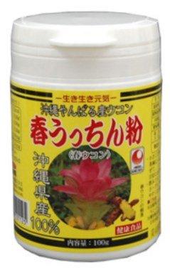 【春ウコン】 春うっちん粉 容器入 100g×12P うっちん沖縄 高品質なウコンを使用 クルクミンや精油成分豊富 のみやすい錠剤タイプ B00GOJZQ28   12P
