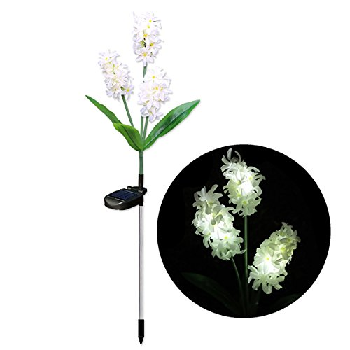 Hyacinth Outdoor Lights in US - 2