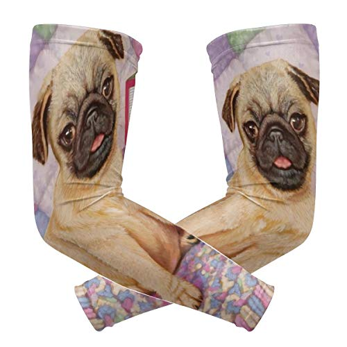 Abc Ladder - Pineapple Ladder Toy ABC Pug Cute Dog Polyester 1 Pair Protection Cooling Or Warmer Arm Sleeves for Men Women Kids Sunblock Protective Gloves Running Golf Cycling Driving