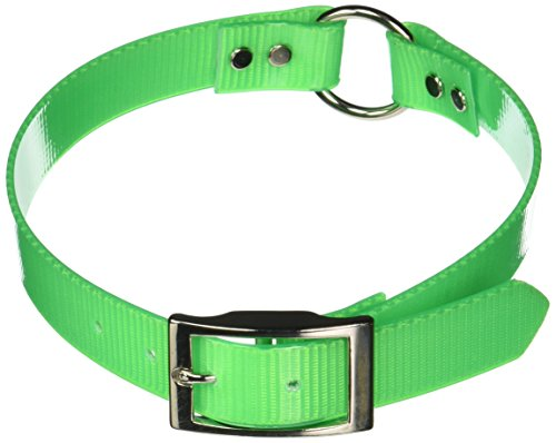 Reflective Collar Sunglo (OmniPet Sunglo Ring in Center Dog Collar, 1 x 27, Neon Green)