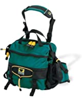 Mountainsmith Day Recycled-Fabric Lumbar Pack