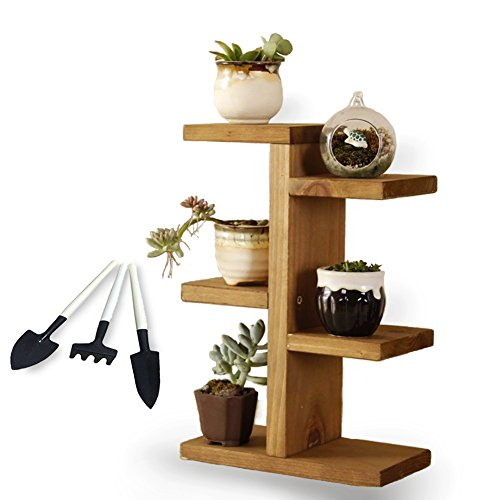Small Plant Stand, Jeerbly Wood Plant Stand for Succulent Tabletop Window Flower Garden Rack 3 Tiers Indoor Desk Decor by Jeerbly