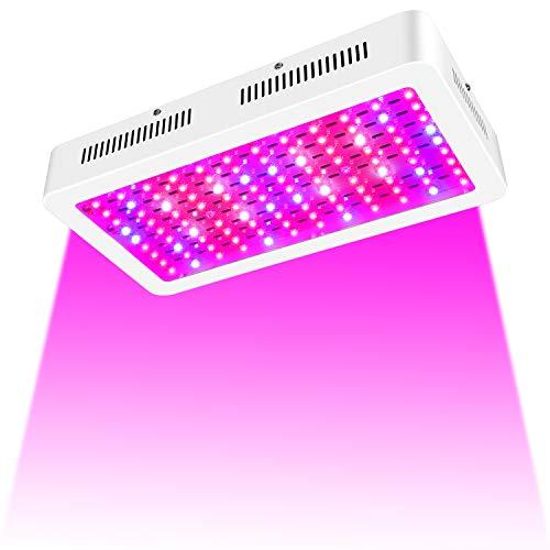 Is Led Lighting Good For Aquatic Plants