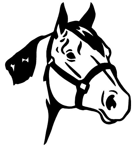 Horse Decals For Trucks Amazoncom - Horse decals for trucks