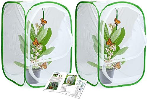 (RESTCLOUD 2-Pack Insect and Butterfly Habitat Cage Terrarium Pop-up 24 Inches Tall)