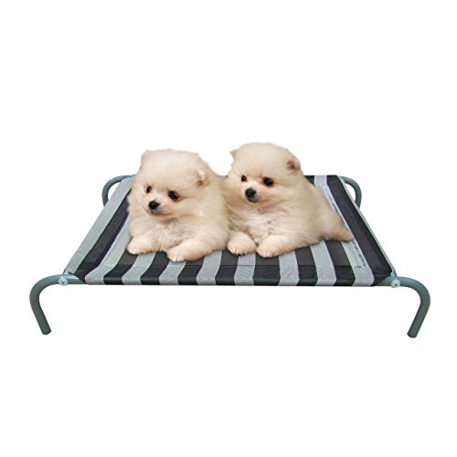 Allmax-Elevated-Pet-Bed-with-Mesh-Fabric-and-Steel-Frame