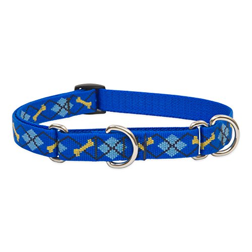 """LupinePet Originals 3/4"""" Dapper Dog 10-14"""" Martingale Collar for Small Dogs"""