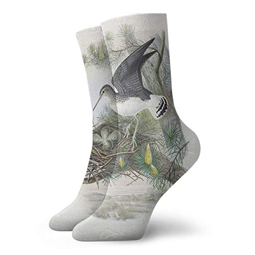 (PengMin Purple Sandpiper Leisure Cotton Socks Men and Women Sports Socks)