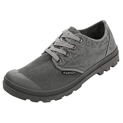 Dasuy Men's Hiking Shoes Low-Top Lace-Up Brogues Wingtip Loafers Steel Toe Work Safety Shoes Slip Resistant Ankle Boot (US:9(43), Gray)