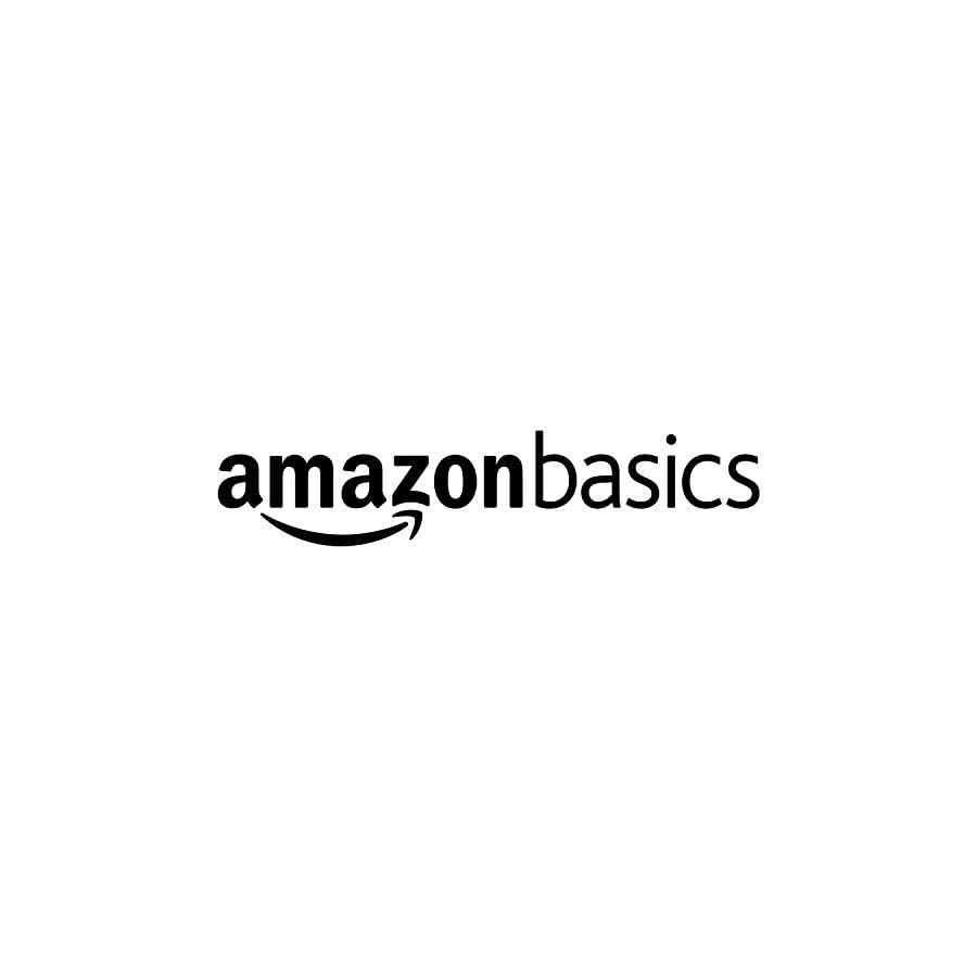 AmazonBasics Double Padded Ski Bag