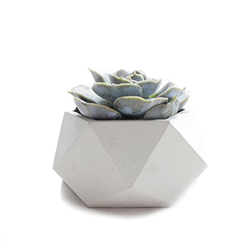 Geometric shapes and concrete team up for the best in contemporary decor - just look at this handmad