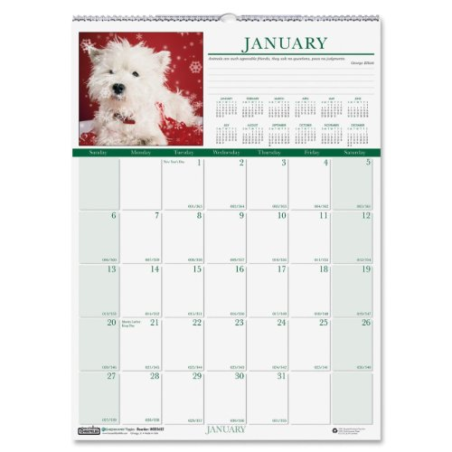Earthscapes Puppies Wall Calendar (House of Doolittle Earthscapes Puppy Wall Calendar 12 Months January 2014 to December 2014, 12 x 16.5 Inches, Full Color Photo, Recycled (HOD3652))