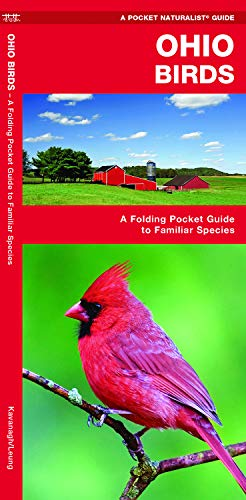 Ohio Birds: A Folding Pocket Guide to Familiar Species (Wildlife and Nature Identification)