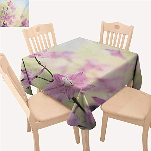(Angoueleven Floral Fabric Tablecloth Larkspur Petals with Bokeh Backdrop Summer Season Botany Bouquet Image Small Square Tablecloth Baby Pink Pale Green W 36