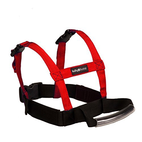 lucky-bums-grip-n-guide-kids-ski-training-harness-red