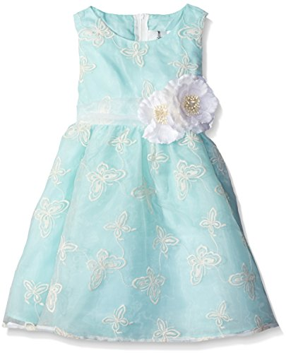 Rare Editions Little Girls' Toddler Embroidered Organza Dress, Mint, (Rare Editions Butterfly Dress)