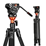 Fluid Head Tripod, Video Tripod with 360 Degree Fluid Head 70inch, Professional Video Camera Tripod System for DSLR, Cameras, DV Camcorder