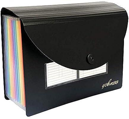 YEBMoo Carpeta archivadora expandible, 12 bolsillos, portátil, A4, organizador de archivos, cartera de acordeón, caja de archivos, bolsa de almacenamiento de alta capacidad con tapa y soporte para tarjetas de visita: Amazon.es:
