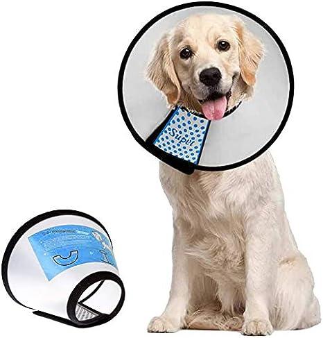 Supet Conos de Recuperación para Mascotas, Collarines para Curar Heridas, Collar Isabelino para Perros y Gatos: Amazon.es: Productos para mascotas