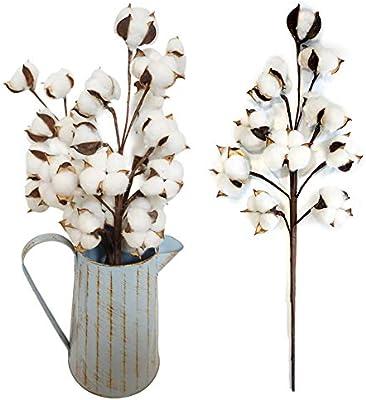 Flores Artificiales de Color Fucsia, Ramas de algodón Natural de imitación, decoración de Flores secas para Bodas, Fiestas, Color Azul 1 Unidad: Amazon.es: Hogar