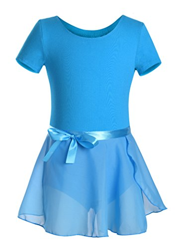 DANSHOW Girls Short Sleeve Leotard with Skirt Kids Dance Ballet Tutu Dresses (2-4, Blue) -