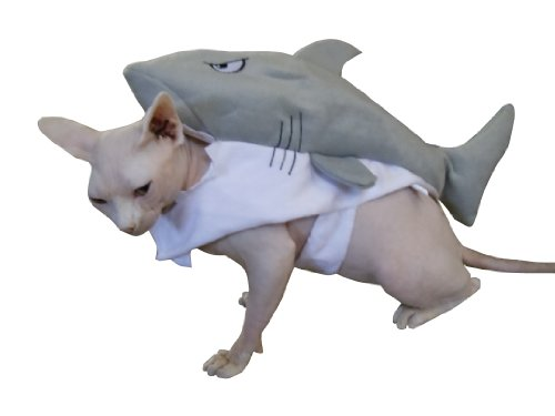 Cat Shark Fin Costume (Shark Pet Costume ~ Size Small)